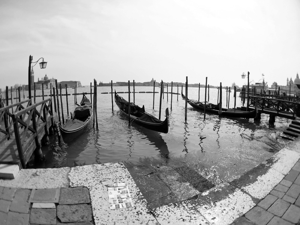 Ollocip Wide Venecia