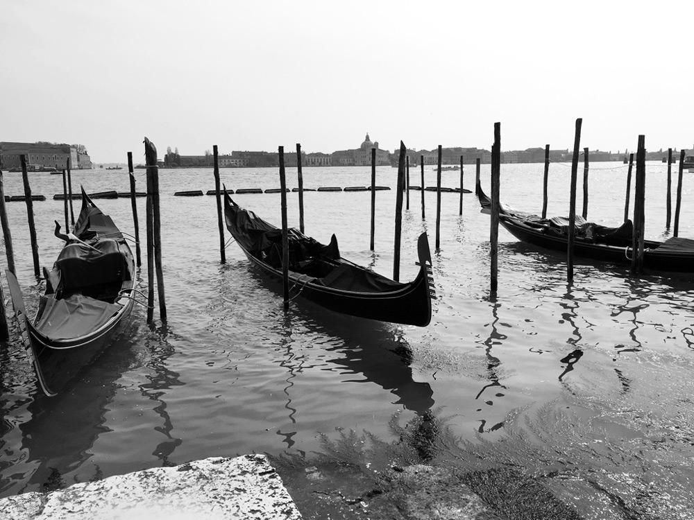 Venecia Olloclip