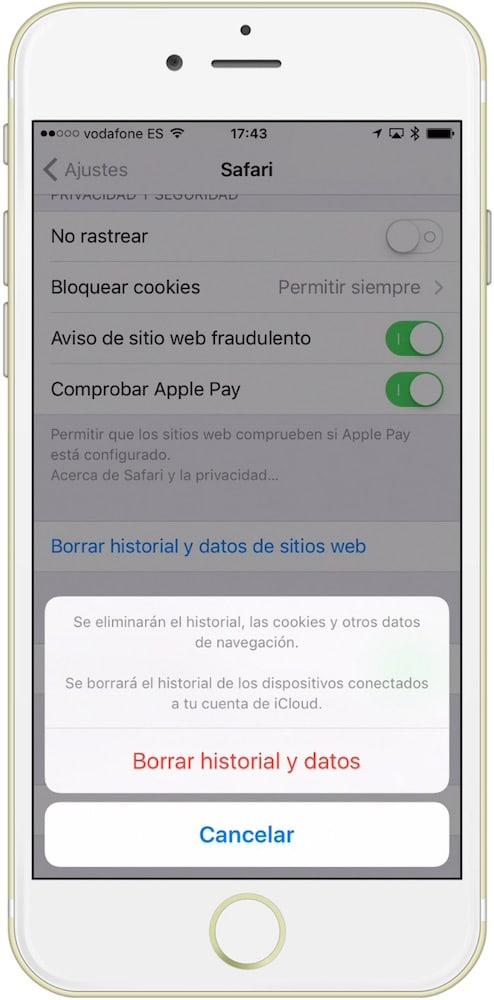 Confirmar borrar datos Safari-Howpple
