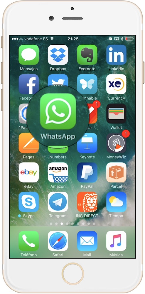 Aplicación WhatsApp de iPhone