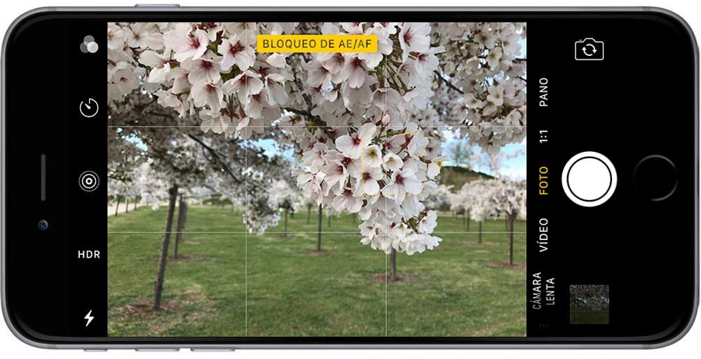 Aprende como mejorar tu fotografía en iPhone bloqueando el enfoque y la exposición en tu iPhone enfoque bloqueado