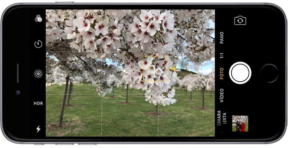 Aprende como mejorar tu fotografía en iPhone bloqueando el enfoque y la exposición en tu iPhone, imagen enfocada