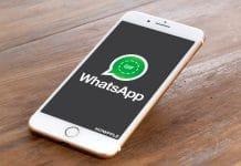 Aprende como mandar un GIF en WhatsApp desde la propia aplicación de iPhone