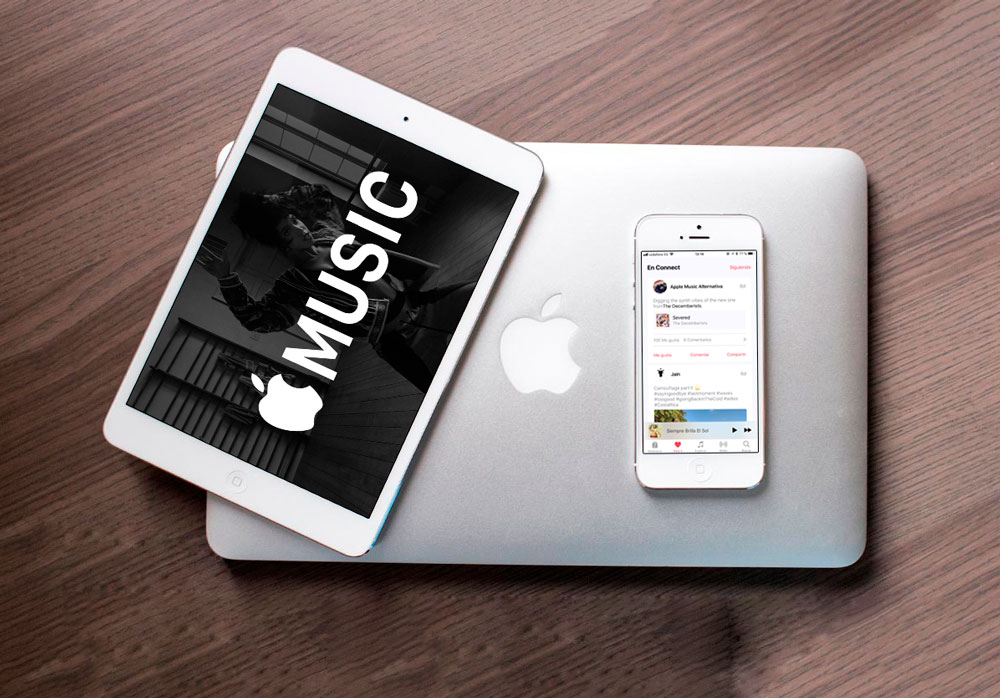Aprende cómo seguir artistas en Apple Music