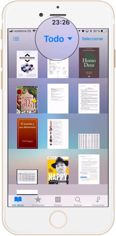 Todos los archivos y libros de iBooks
