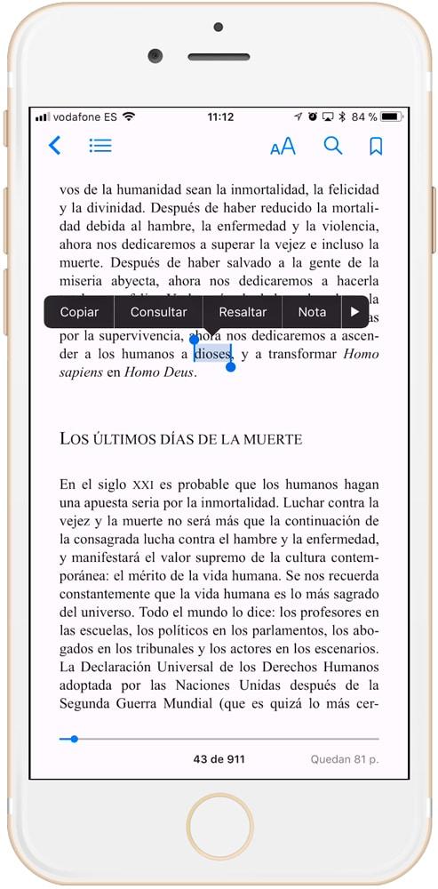 Opciones de iBooks
