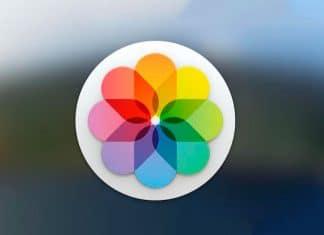 Aprende cómo crear álbumes de fotos